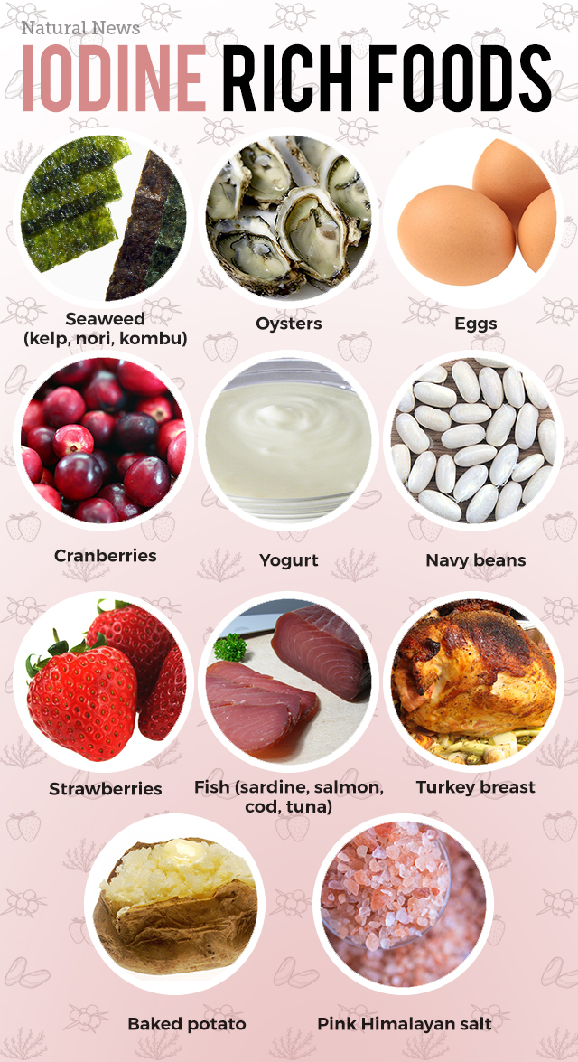 Food Iodine Content List